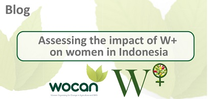 Assessing the impact of WPlus on women in Indonesia