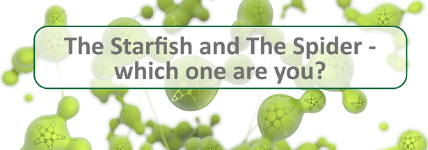 The Starfish and The Spider - which one are you?
